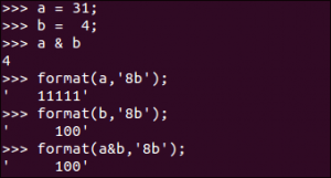 python_binary_format_bitwise_operation_bit_and_sample