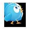 birdies-icon-set05